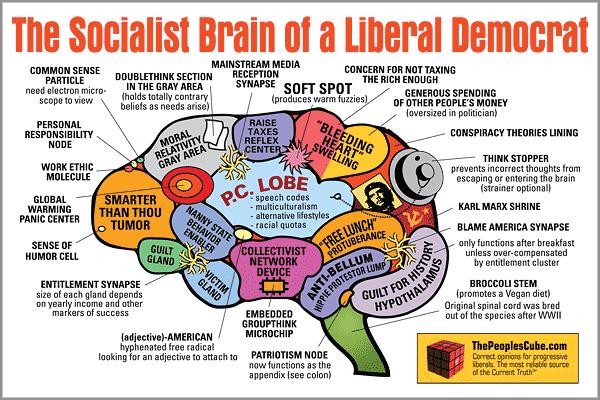 Brain_Socialist_Democrat.png