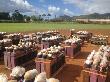 Kauai small pics (74).png
