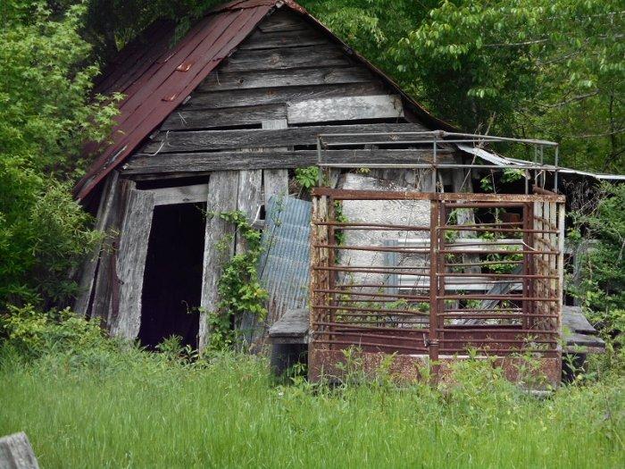 shack 002.JPG