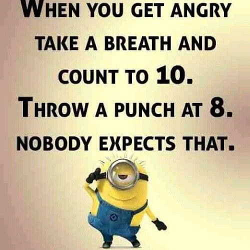 throew a punch.jpg
